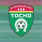 «Тосно» одержал победу в матче с «Динамо-СПб»